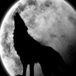 人狼ゲームの役職【基本編】