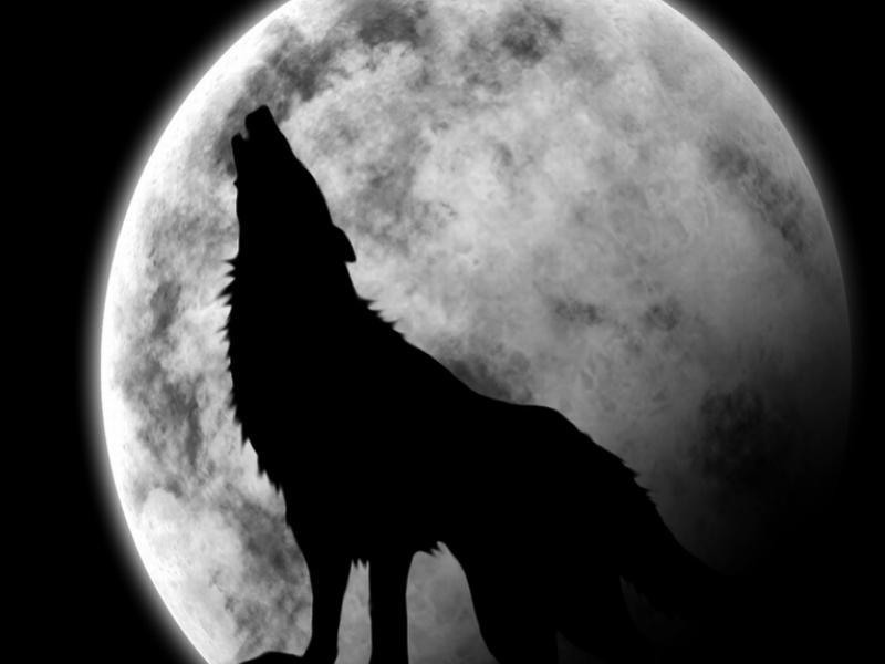 人狼ゲーム 専門用語 画像