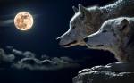 人狼ゲーム攻略!初心者の心得10選